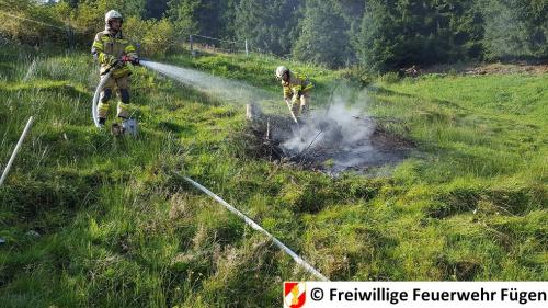 BrandWiese17 (2)